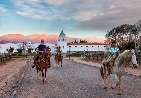 Horse rides in Cafayate
