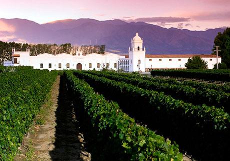 The wine cellar at the Hotel Patios de Cafayate